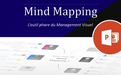 Découvrir le Mind Mapping en 50 slides (Maj 2020)