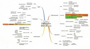 Mind Mapping étudiant apprentissage
