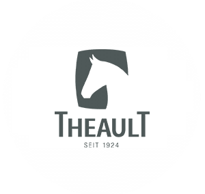 Theault : Installer le Management Visuel via le Mind Mapping pour le service commercial