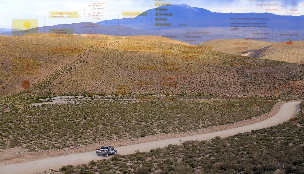 Piloter avec le Mind Mapping (Départ Roses des Andes)