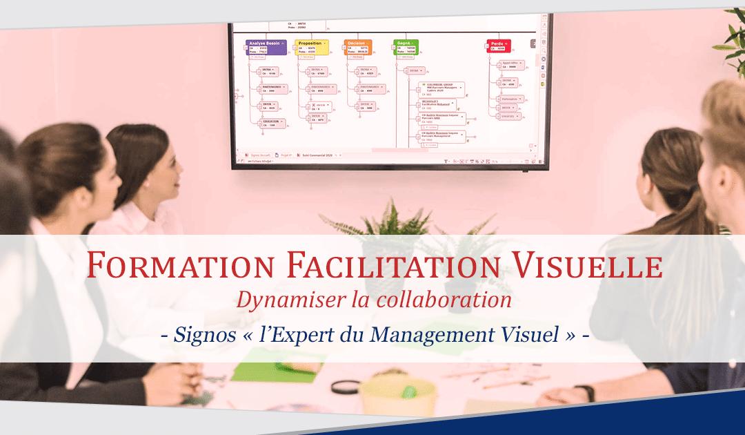 Formation Facilitation visuelle